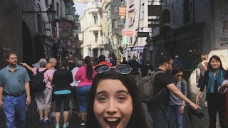 Primeira vez no parque do Harry Potter - Parte 1 (Beco Diagonal)