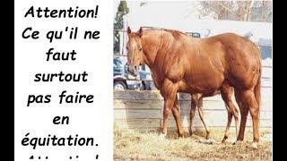 ce qu'il ne faut surtout pas faire en équitation
