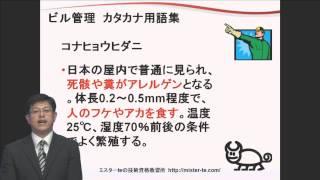 コナヒョウダニ【ビル管用語集】
