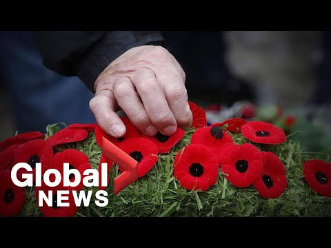 Remembrance Day:  Canada's History Of Immigrants Who Served And Why We Wear Poppies