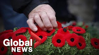 Remembrance Day:  Canada's his…
