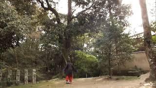 鷺森神社  ( 武道 : Martial Arts 2019.04.18 @ 15:48 )