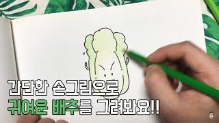 배추 그리기 - cabbage drawing | 손그림…