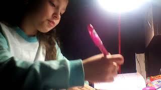 Как я делаю домашнее задание.