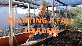 Planting a fall garden in a raised bed