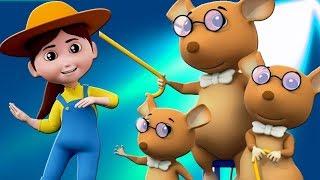 Canciones infantiles para niños | Dibujos animados para niños | Videos y canciones para bebés.