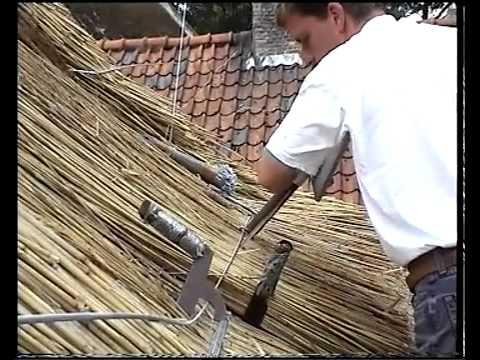 Заготовка камыша для крыши  Технологии укладки камышовых снопов на кровлю.