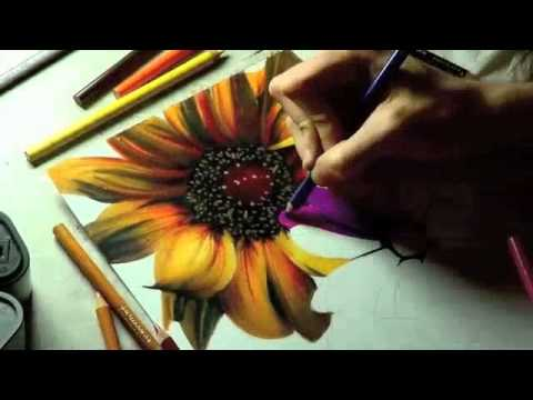 Drawing Realistic Flowers With Colored Pencil