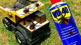 Deadly Redback Spiders On Tonka Toys WD40 One Year Later Study & HAILSTORM
