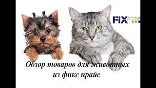 2 Обзор товаров для животных из фикс прайс.