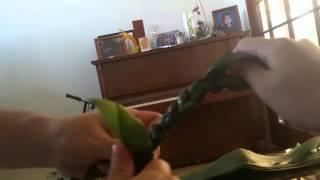 Ti-leaf lei po