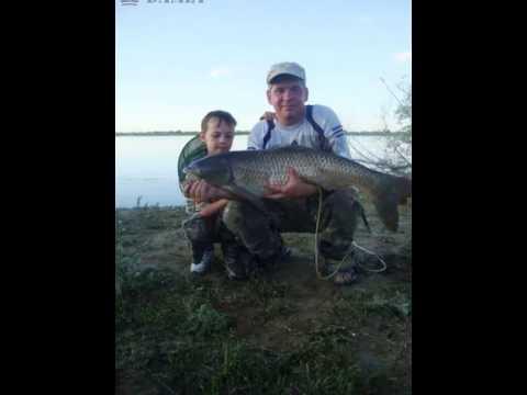 рыбалка как у Путина и Лукашенко