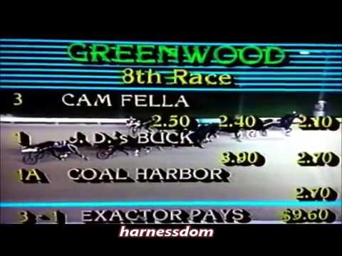 1983 Greenwood Raceway CAM FELLA Canadian Pacing Derby Track Record