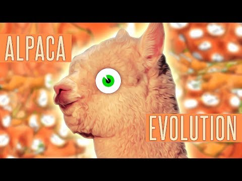 This game will change your life forever.. (Alpaca Evolution)