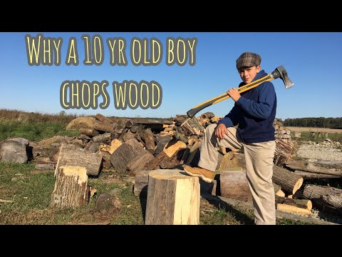 Why a Boy Chops Wood