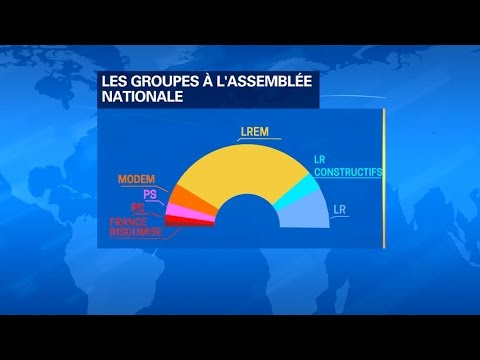Quels sont les huit groupes parlementaires à l'Assemblée nationale?