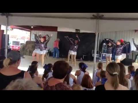 15-16 Luverne High School Dance Team.. Perform at Peanut Festival.