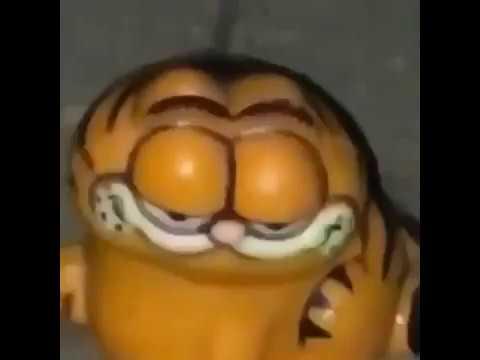 Garfield Meme Youtube