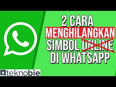 2 Cara Hide Online Status WA | Menghilangkan Simbol Online Di WA Whatsapp