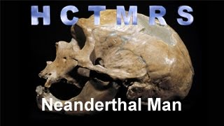 How Creationism Taught Me Real Science 29 Neanderthal Man