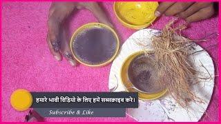 इस औषधि(नारियल की जटा) से खुनी और बादी बवासीर का 1 दिन में इलाज!Bawasir (Piles) ka illaj