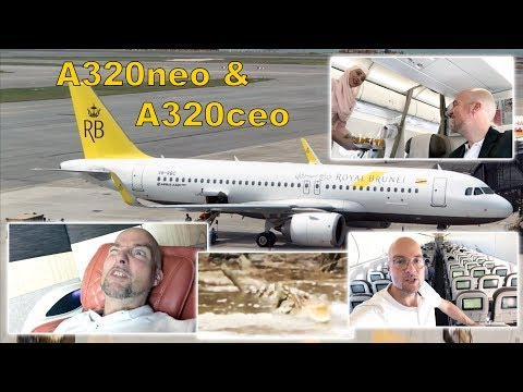AMAZING BRUNEI A320neo & ceo, ULTIMATE SERVICE, alligators, wild monkeys! [AirClipsTraveller.com]