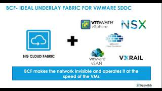 Big Cloud Fabric: E-vpc For Vmware Nsx-t