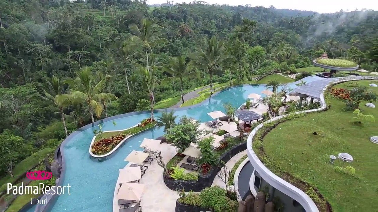padma resort ubud - the longest infinity pool in bali - youtube