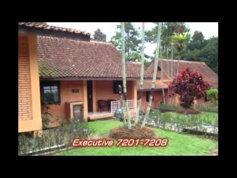 Bungalow Grand Cempaka Resort Puncak - Bogor - YouTube