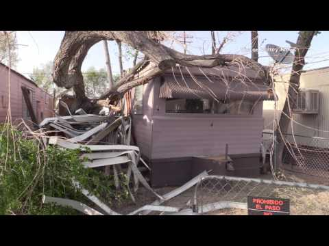 Tree Falls on Families Trailer Home Trapping them Inside- Victorville