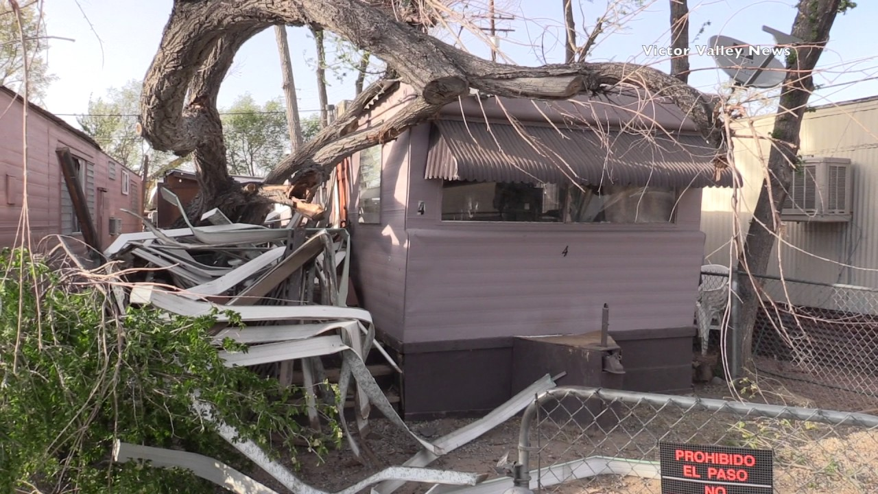 Tree Falls On Families Trailer Home Trapping Them Inside Victorville