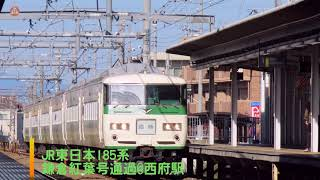 JR東日本185系鎌倉紅葉号通過@西府駅(2019/11/17)