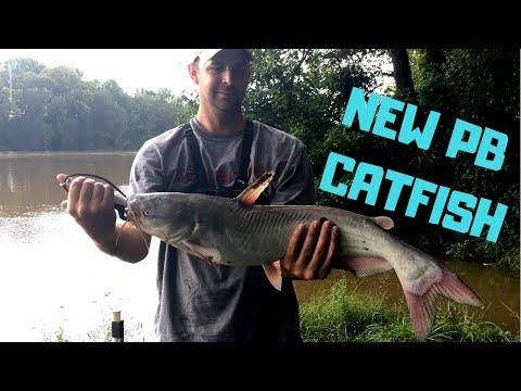 PB CATFISH!!   While Fishing In The MUDDY RIVER