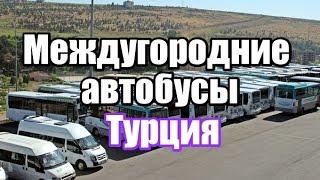 видео Билеты на автобусы в Болгарию