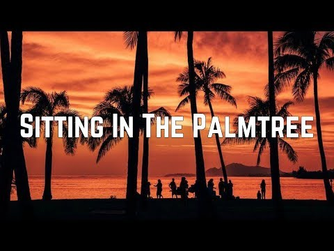 Abba - Sitting In The Palmtree (Lyrics)