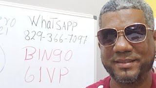 BINGAZOOO 61 VIP LEIDSA