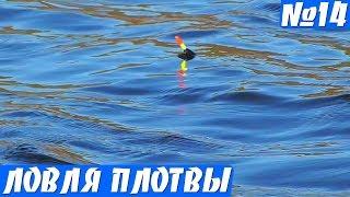 Рыбалка на удочку в мае. Плотва на поплавок весной