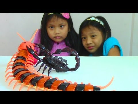 Thumbnail: Innovation Scorpion and Giant Scolopendra Creepy Crawlers Toys