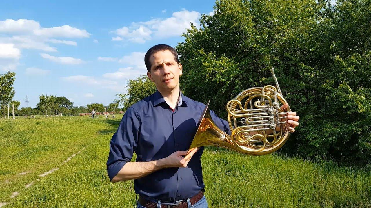 Musikschule@home - Das Horn