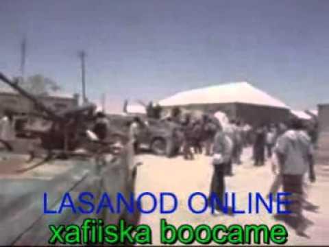 lasanod online