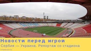 Сербия Украина последние новости перед игрой репортаж со стадиона