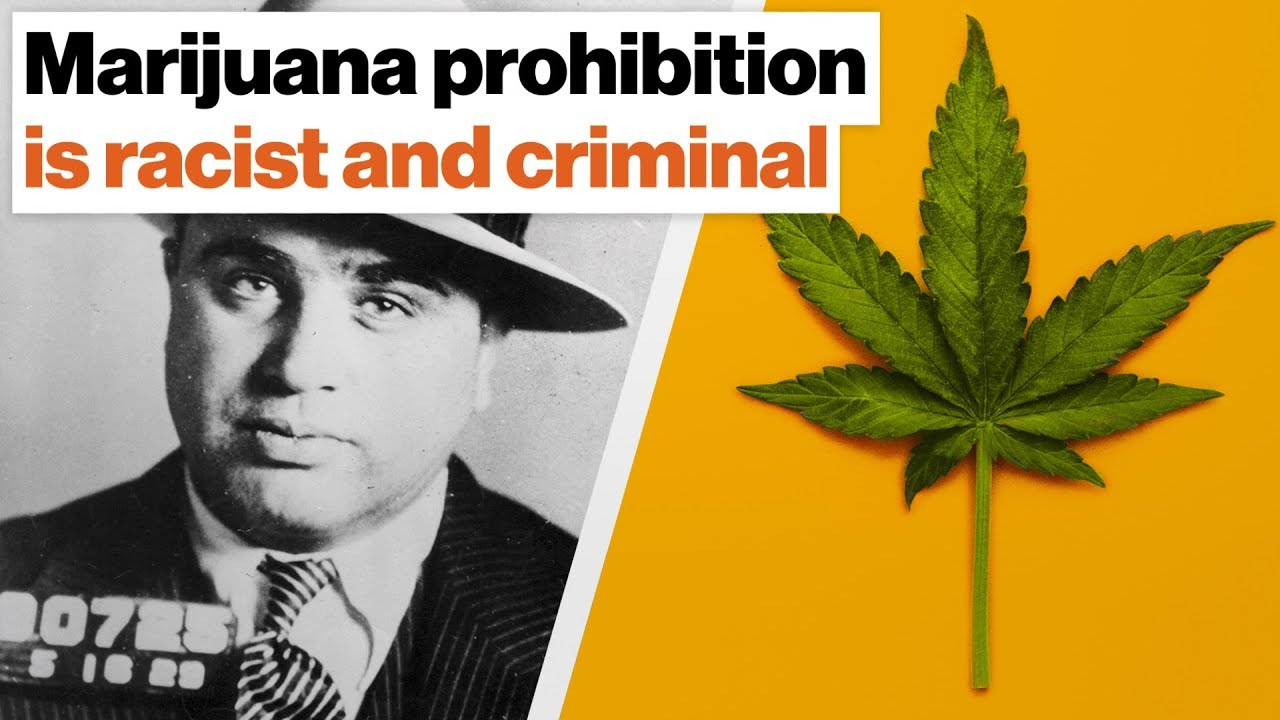 Marijuana prohibition is racist and criminal, harms kids, and ruins lives | Johann Hari - YouTube