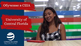 Обучение в США. Отзыв студента 2 курса  University of Central Florida (UCF).