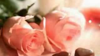 Bódi Guszti- millió rózsaszál