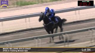 Lot 94 - 2YOs in Training Breezeup Thumbnail