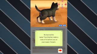 Let's Play Nintendogs: Episode 1: Bringing Home The New Puppy!
