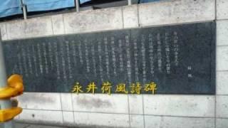 大田文化の森関連の講座のいっかんで行って来ました。 12月なのにポカポ...