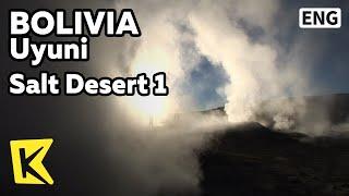 【K】Bolivia Travel-Uyuni[볼리비아 여행-우유니]소금사막 1- 솔데마냐나 간헐천/Sol de Manana/Salt Desert 1/Crater