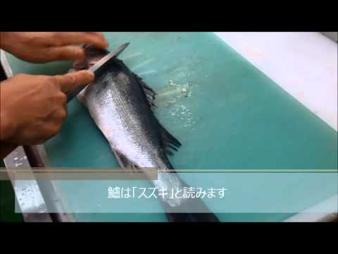 How to dress Japanese sea perch スズキのさばき方 - YouTube