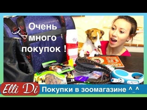 Покупки из зоомагазина для собаки - уход за собакой с Elli Di.